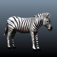create animal model tutorial